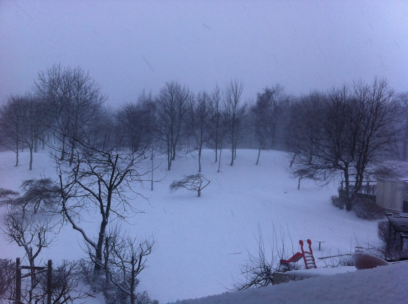 Scandinavian winter in February